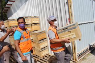 Yangınzede bal üreticilerine arı kovanı desteği